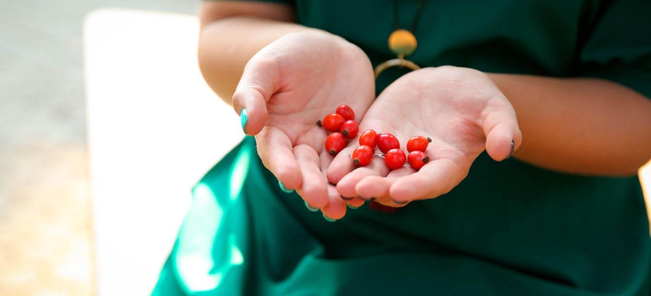 El LICOPENO. Poderoso Antioxidante FUENTE DE SALUD